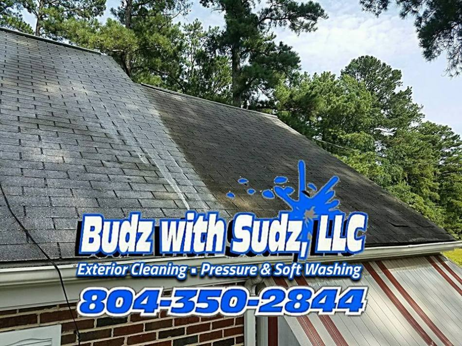 roof cleaning in dinwiddie